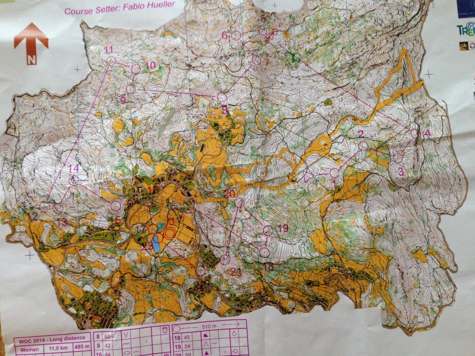 World Orienteering Champs map